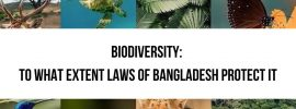 Biodiversity in Bangladesh- Legal Framework